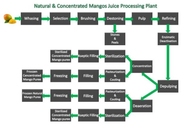 Turnkey Project for Customized Mango Juice Production Line